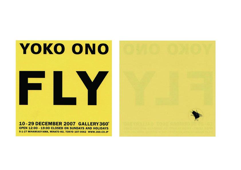 2007_fly_dm