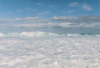 wave_2005