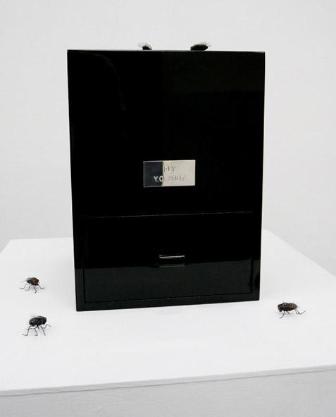 fly_box